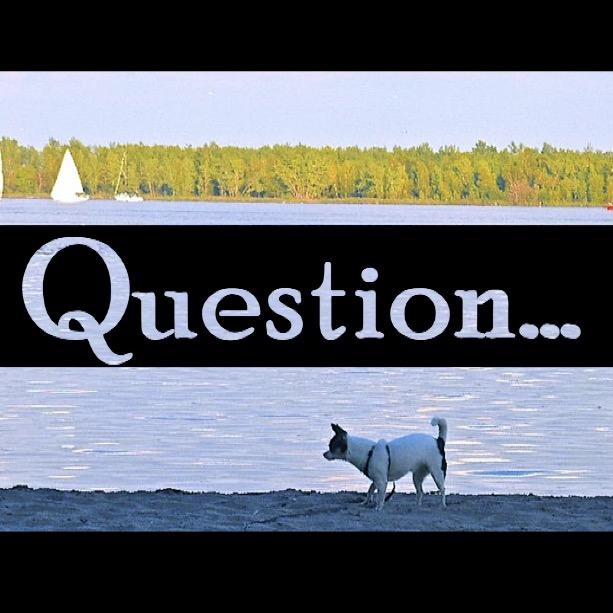 Follow The Polo Question