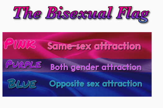 FollowThePolo-Bisexual Flag